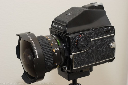 Mamiya 645 1000S with the 25mm fisheye lens